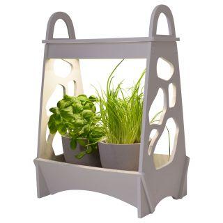 """LED-Mini-Garten h: 50cm weiß """"Garden"""""""